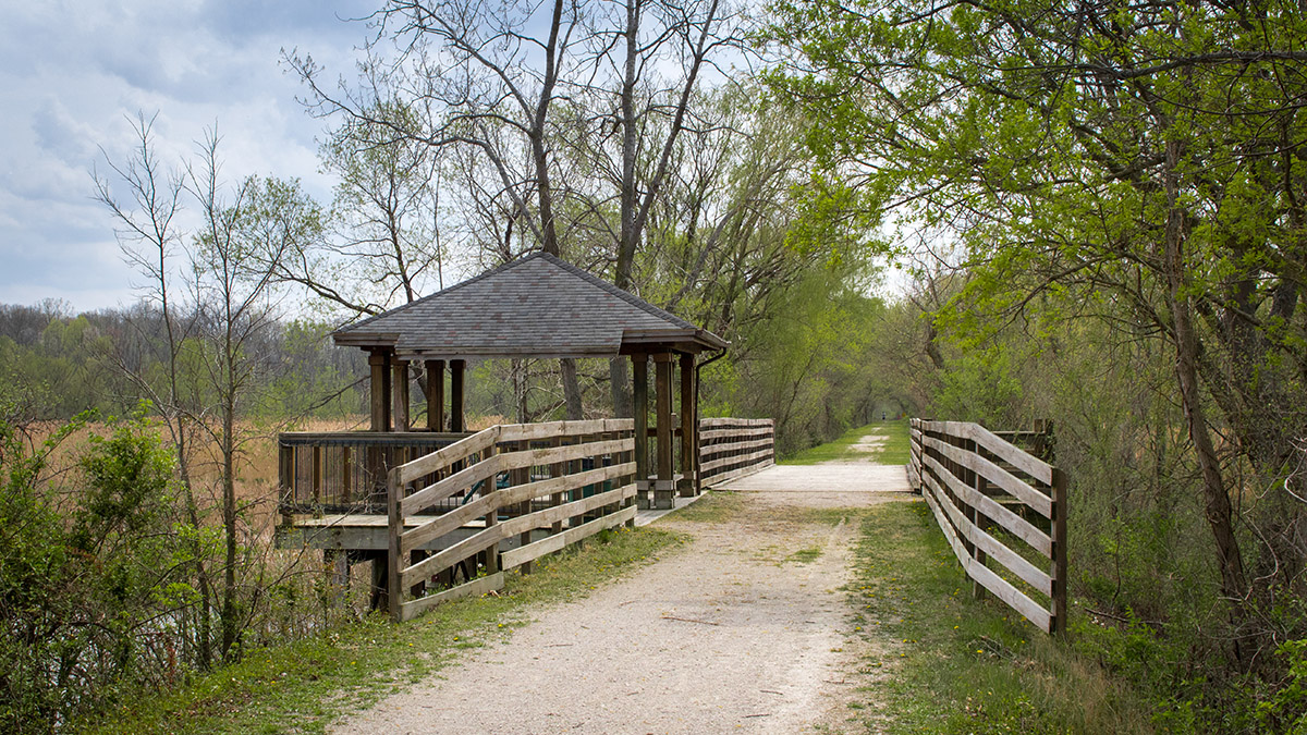 huron river path gallery 4