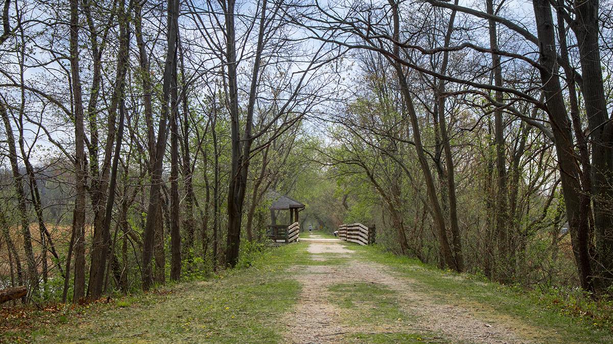 huron river path gallery 5