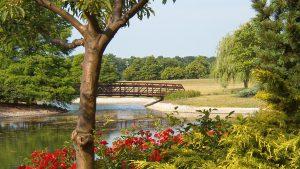 James H. McBride Arboretum