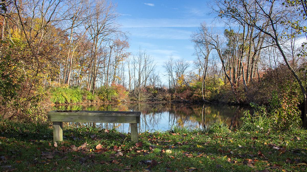 Osborn MetroPark Dildine Pond