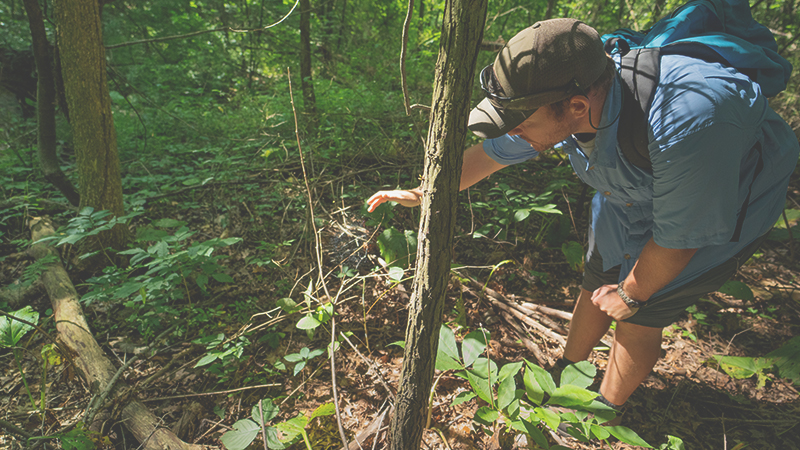 Photo Walk | With a Naturalist!
